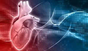 Cardio Nrj – cena – lékárna – krém