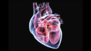 Cardio Nrj – na hypertenzi - složení – výrobce – prodejna