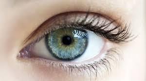 Cleanvision – lepší zrak - účinky – lékárna – krém