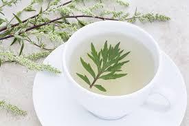 Herbal Tea Anti Parasite – akční – kapky – prodejna