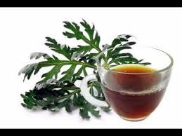 Herbal Tea Anti Parasite – proti parazitům - česká republika – účinky – složení